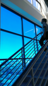 Commercial Window Tinting Applications